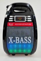 Hordozható hangrendszer-Karaoke